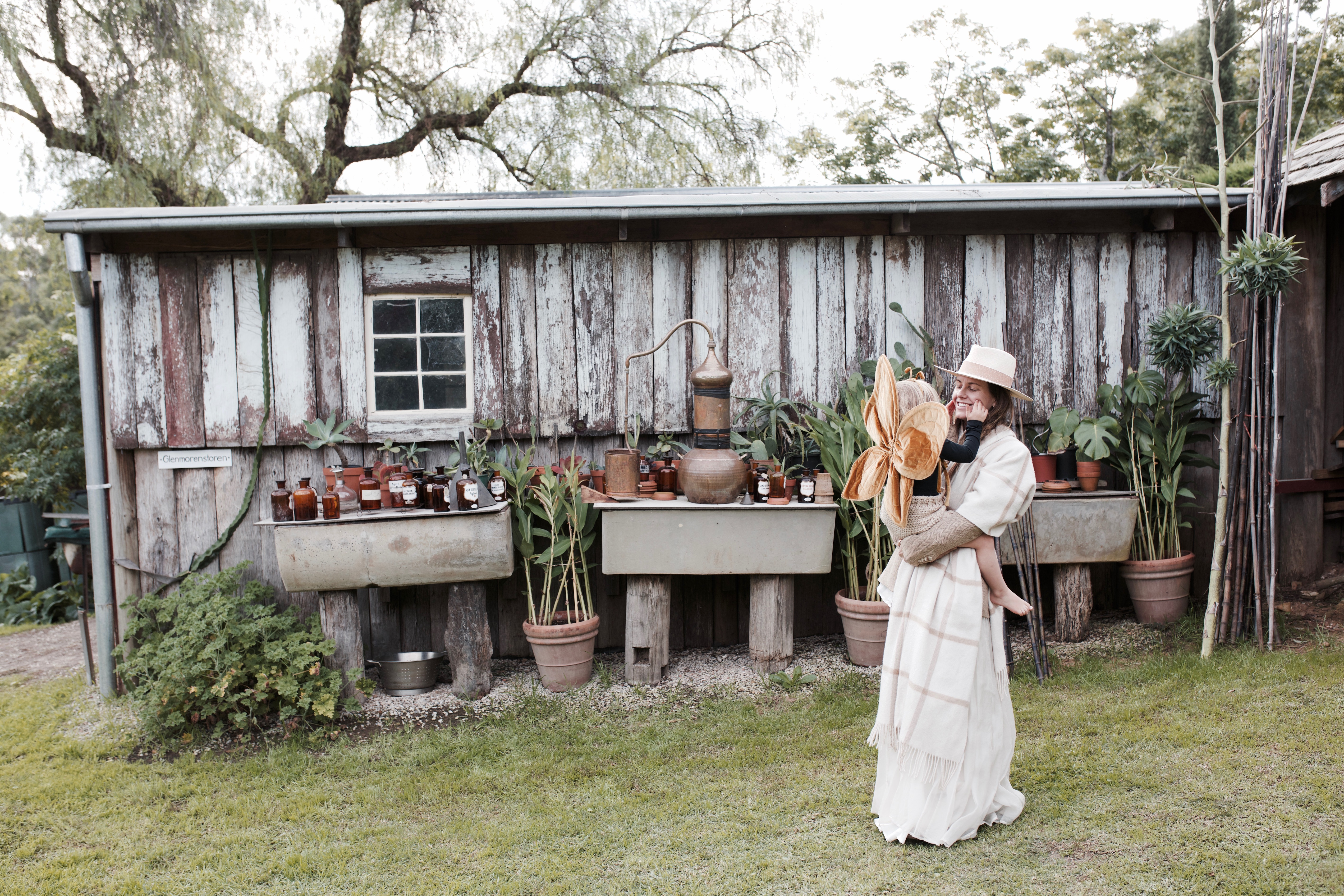 sibella court the society inc nomad treasure hunter garden alchemist the scent seeker captain and the gypsy kid catgk