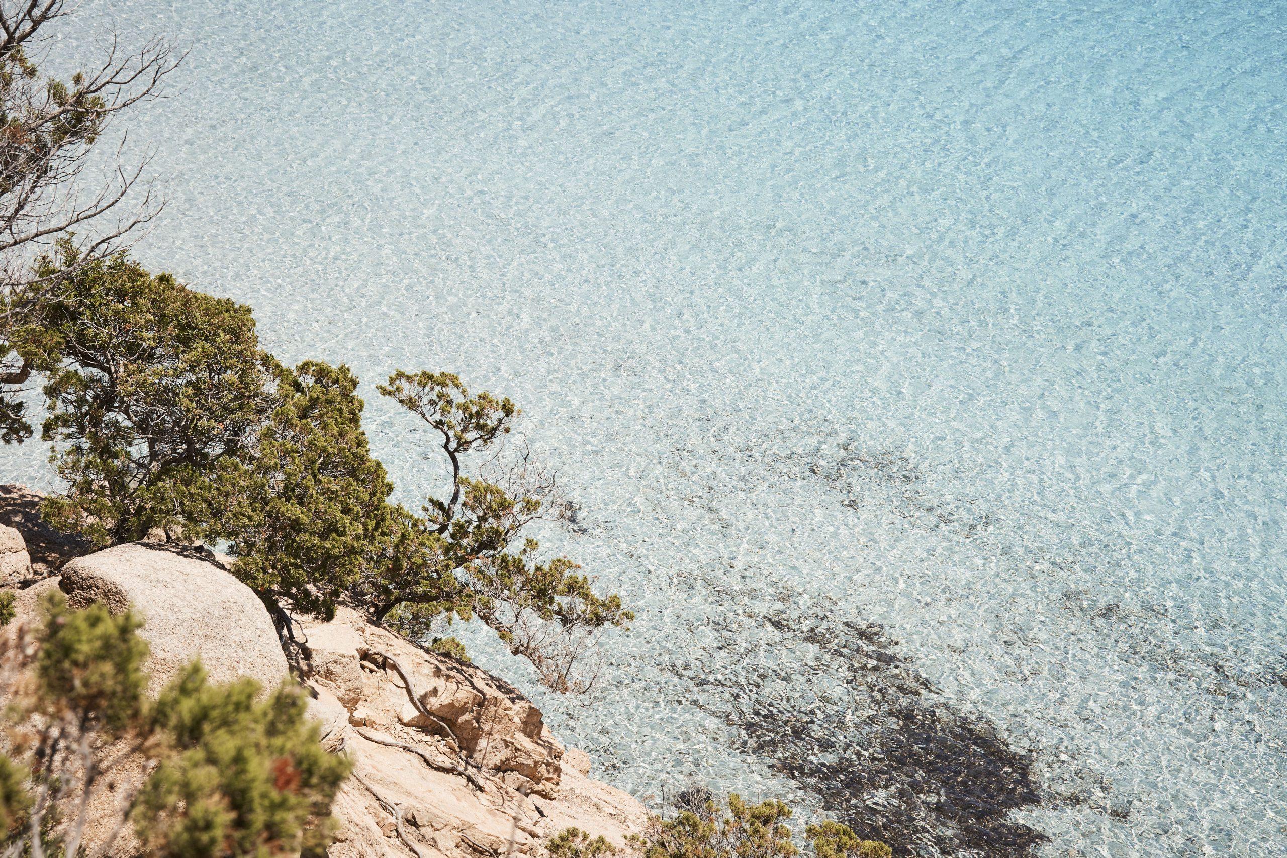 Corsica_0619_0P4A6887